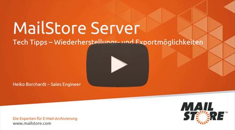 Video Wiederherstellungs- und Exportmöglichkeiten